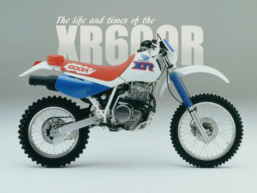 HONDA XR600R: BRING IT BACK!