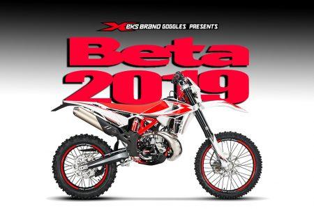 beta 2019